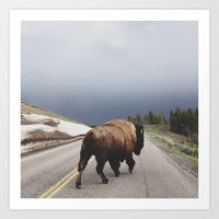 Art Print featuring Street Walker by Kevin Russ (gorgeous photography!)