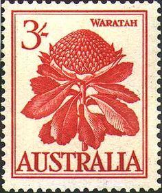 NSW Waratah stamp (1959) designed by Margaret Stones via Australian National Botanic Gardens.