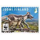 Uhanalaisia eläimiä II - 15 kotimaan ikimerkkiä Kangaroo, Animals, Seals, Baby Bjorn, Animaux, Animales, Animal, Dieren