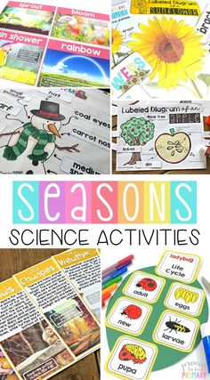Teach your class about the four seasons with this resource that includes science activities and reading materials. Tons of engaging materials and lessons for kids are included. Complete a research project, learn about life cycles, sort facts, and conduct science experiments. #seasons #fallscience #winterscience #springscience #scienceforkids