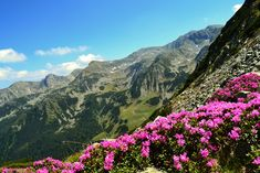 Retyezát Nemzeti Park Patras, Mountains, Nature, Travel, Wels, Naturaleza, Viajes, Traveling, Natural