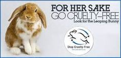 leaping bunny logo - Yahoo Canada Image Search Results