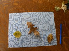 What a great way to learn! Concentric Leaf Shapes