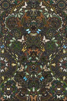 4b39d0bbe4f2 Damien Hirst, Ptolomea, 2012 Entomological specimens and Hammerite paint on  canvas 108 x 72