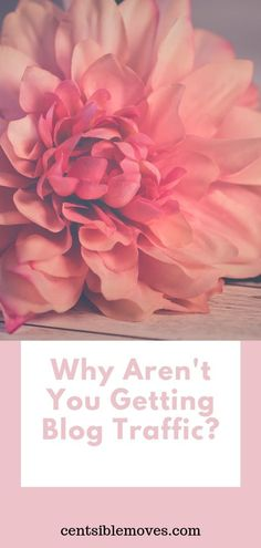 Learn why you aren't getting blog traffic!   Get Pinterest Traffic to your blog in less than one month!  #blogtraffic #pinteresttraffic #pinterestmarketing #growyourblog #startblog #tailwind #tailwindapp #tailwindtribes How To Start A Blog, How To Make Money, Hustle Money, Earn Extra Income, Debt Payoff, Pinterest Marketing, Investing, Earn Money, Social Media