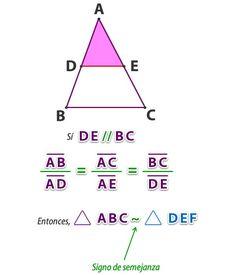 Teorema de Thales, teoría y ejercicio resuelto | Математика ...