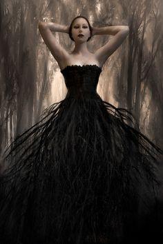 NOIR WOODS Fine Art Print  represents a deep dark by spalenka