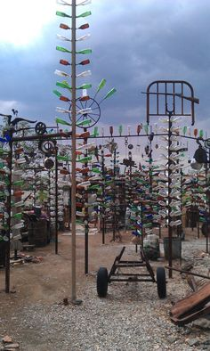bottle tree forest