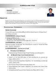 Image Result For Cv Format For Hse Officers Cv Format Sample Resume Resume