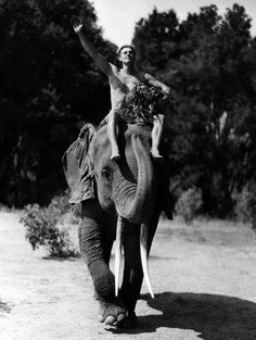 Johnny Weissmuller as Tarzan---I LOVED THIS SHOW WHEN I WAS GROWING UP!