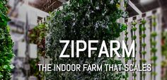 The NEW rEvolution in vertical farming ...