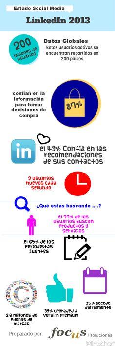 Datos LinkedIn 2013