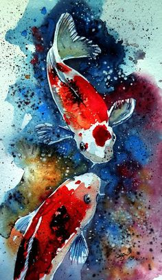 Buy Koi fish II x 13 cm/, Watercolour by Kovács Anna Brigitta on Artfinder. Discover thousands of other original paintings, prints, sculptures and photography from independent artists. Koi Fish Drawing, Fish Drawings, Pond Drawing, Drawing Step, Drawing Sketches, Koi Fish Pond, Fish Ponds, Art Koi, Pisces