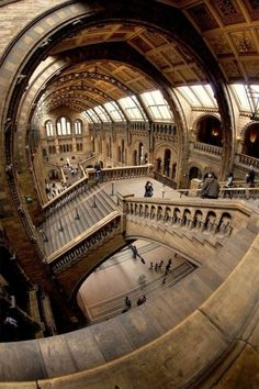 Natural history museum in London.