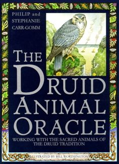Druid Animal Oracle Tarot Card Deck for sale at Bellirosa Needful Things. Your source for tarot cards, tarot decks, tarot books and tarot supplies. Browse our Wiccan Supplies and more online. Oracle Book, Oracle Tarot, Celtic Druids, You Draw, Animal Cards, Deck Of Cards, Card Deck, Tarot Decks, Tarot Cards
