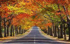 australia-scenery-photo2.jpg 1,920×1,200 pixels