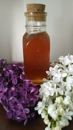 Lilac infused oil & honey - Lilacs are astringent, tightening and drying. Can be used as facial oil/ honey mask or as base for salves and balms.