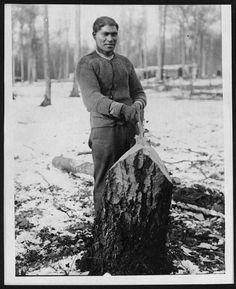 WW1. Un lumberman Maoris se tient à côté d'un arbre nouvellement abattu. Dans cette neige a couvert des bois, la seule protection qu'il a est un cardigan de laine. Il serait peut-être à voir avec le travail qu'il fait chaud, il est également possible qu'en raison de la pénurie de fournitures à l'avant, il n'a pas été délivré avec des vêtements d'hiver. National Library of Scotland, D.802