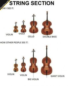 Violin... | Click the link to view full image and description : )
