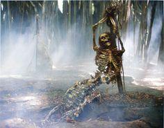 pirates of the caribbean skeleton | skeleton.jpg - Pirates of the Caribbean Wiki - The Unofficial Pirates ...