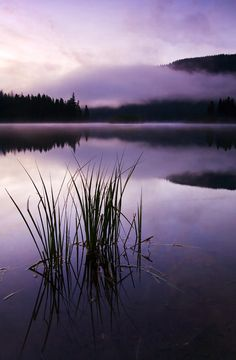 ~~Twilight Glow ~ a cold mist rises from the surface of a glowing twilight clear lake by Mike Dawson~~