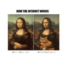Every Friday we love to share something that gave us a good laugh. Here's a silly picture we found that reminded us of Chester. And, let's be real, the internet loves pictures of cats…