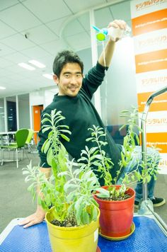 Mr.Yamamoto  https://www.facebook.com/herbsdiary