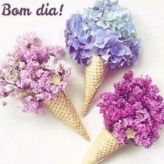 #tudodebom #paz #flowers #vida #encando #destaque #instafriends #bomdia #agradecer #gratidao #viver #sorrir #sentir #conseguir #inspirar #dellapraelas