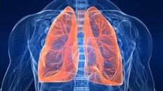 5 Tips to Keep Your Lungs Healthy. chronic obstructive pulmonary disease (COPD) is the third leading cause of death among people Lung Infection, Shortness Of Breath, Lung Cancer, Human Services, Asthma, Lunges, Medical, Strong