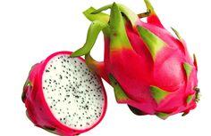 nice Drakenfruitdrakenfruit