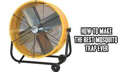 How To Make The Best Mosquito Trap Ever I won't beat about the bush!Mosquito traps DO NOT WORK. Some may catch a few but in reality you will still get bitten and be itchy for days after a nice night in your garden! I found the best mosquito trap there is available and chances are you have all th…
