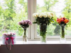 TerezaInOslo: Narozeniny a tip na ten nejkrásnější dárek, který můžete věnovat