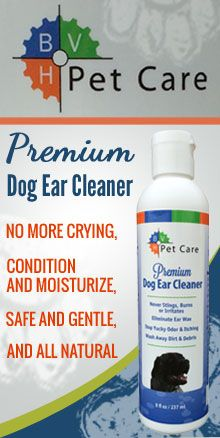 Single Dads with Dogs Could Benefit from New Dog Ear Cleaner