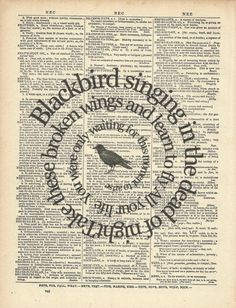 Blackbird - Beatles. My fav beatles song. I want this.