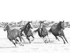 Bernie Brown Running Free Horse Pictures