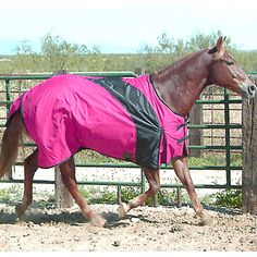Exselle Prima Blanket-Raspberry with Black