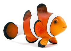 Kidsource Mojo Clown Fish