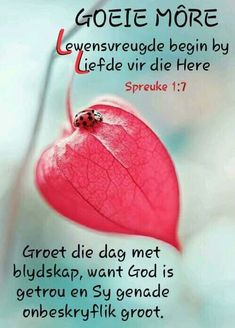 Morning Greetings Quotes, Good Morning Quotes, Lekker Dag, Afrikaanse Quotes, Goeie Nag, Goeie More, Christian Messages, Special Quotes, Verses