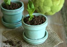 Chocolate Pudding Pots (dairy-free)--> so cute!!!!