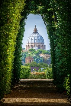 Are you traveling to Italy? Read this first: 30 Travel Tips You Need To Know Bef… Are you traveling to Italy? Read this first: 30 Travel Tips You Need To Know Before Visiting Italy Places To Travel, Places To See, Travel Destinations, Holiday Destinations, Voyage Rome, Italy Travel Tips, Travel Europe, Budget Travel, India Travel