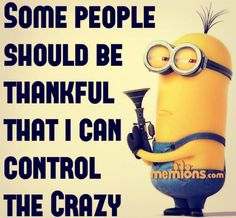 Some people should be thankful that I can control the crazy. - minion