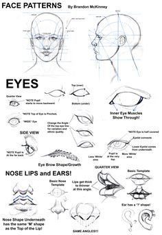 Notes on drawing the face, eyes, ears, mouth and nose