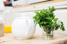 mint leaves on water for fresh scented air