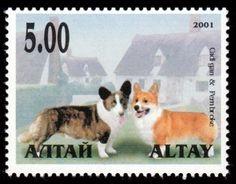 Corgi stamp, Altay