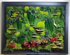"""Real moss wall art, 18 """"x framed - Art Garden Ideas Moss Wall Art, Moss Art, Vertical Garden Wall, Garden Wall Art, Succulent Wall Art, Plant Wall, Art Mural Vert, Vertikal Garden, Plantas Bonsai"""