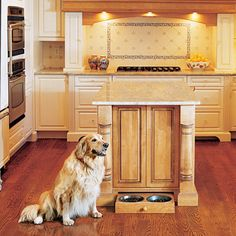 Pull out kitchen drawer for dog food.  Love this efficient use of space!
