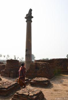 Ashokan Pillar with the lion capital, Vaishali, Bihar, India
