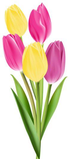 "Photo from album ""Пасхальное настроение on Yandex. Tulips Images, Flower Images, Flower Art, Exotic Flowers, Beautiful Flowers, Cut Flowers, Flower Phone Wallpaper, Tulip Painting, Fused Glass Art"