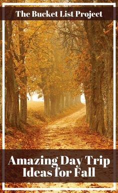 There are a variety of amazing day trip ideas for Fall. That is why you shouldn't be too stuck with this list of ideas to do this season. Discover some amazing Fall Activities to do with your whole family! #AutumnVibes #FallColors #Pumpkins #bucketlist Autumn Activities, Activities To Do, Outdoor Activities, Best Bucket List, Adventure Bucket List, Road Trip Snacks, Road Trips, Bucket List Ideas For Women, Adventure Activities