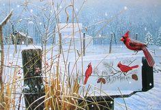 Leanin' Tree Michael Budden Cardinal Birds Mailbox Snow Christmas Greeting Card
